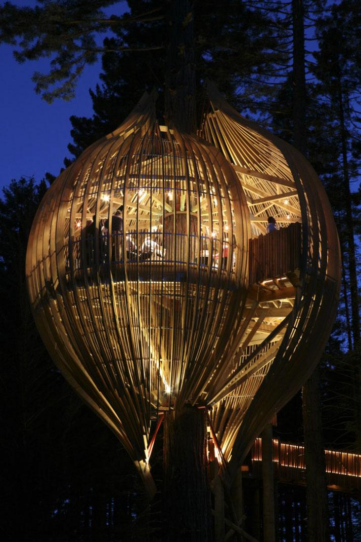 New Yellow Restaurant Treehouse Zealand