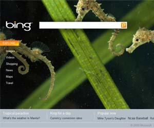 Bing se hace más social