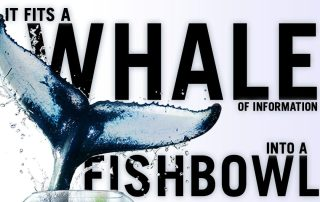 It's a Whale of Information that fits in a Fishbowl