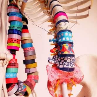 atelier_labo_anatomie