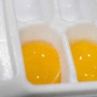 easy-freezing-egg-yolks-2