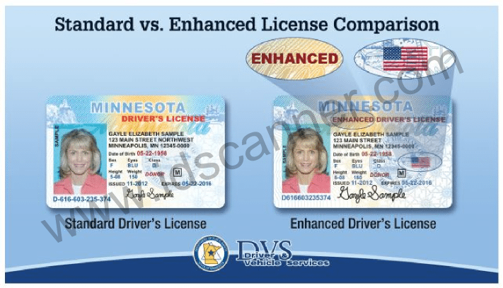 Back Drivers License