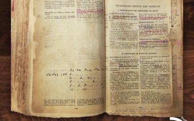 """Conociendo la Biblia en """"Profetas: Talleres de Formación"""""""