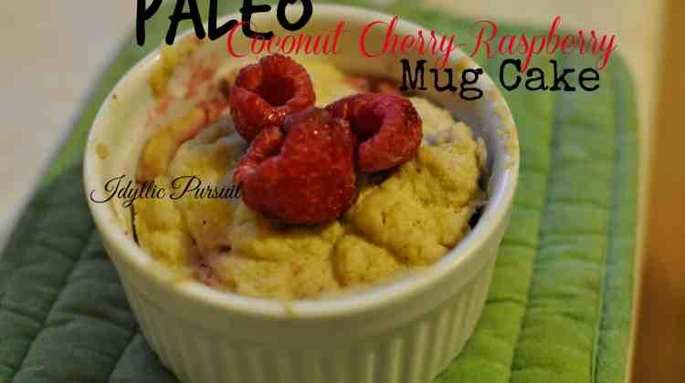 Paleo Coconut Cherry-Raspberry Mug Cake