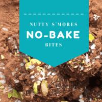 Nutty S'mores No-Bake Bites