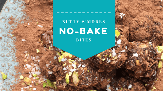 Nutty S'mores No-Bake Bites at idyllicpursuit.com