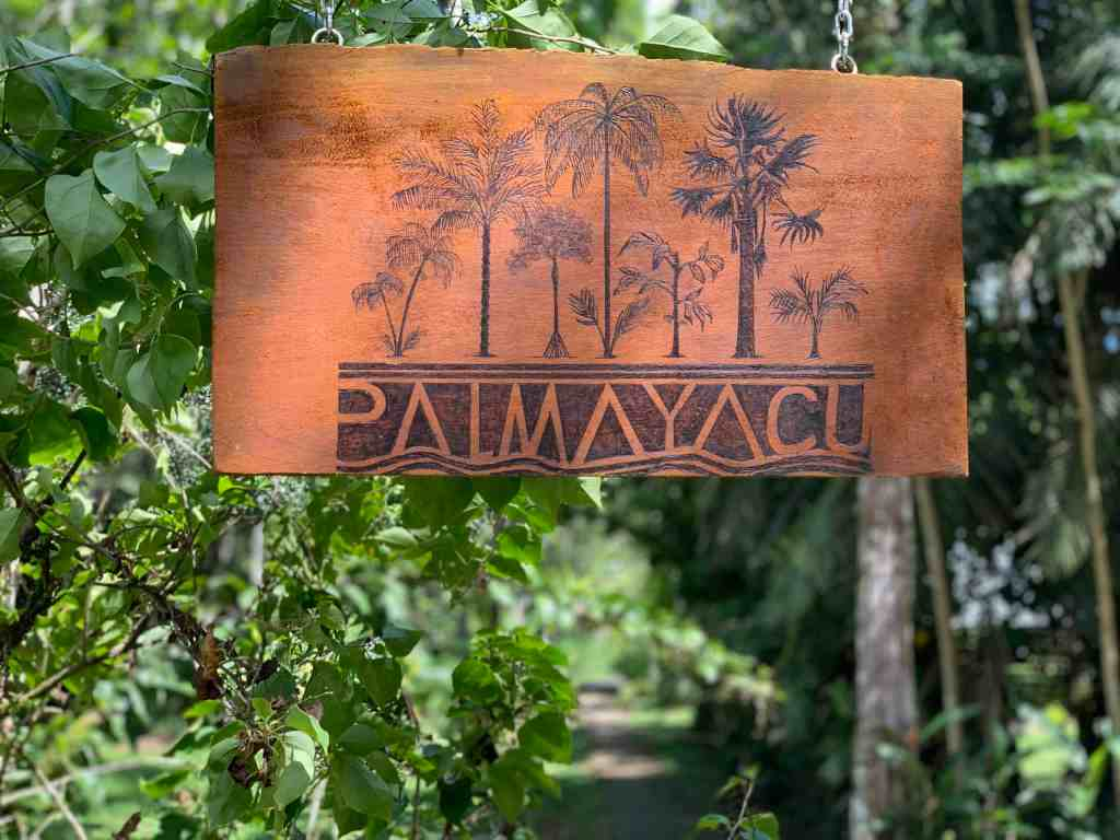 Photos of the Amazon: staying at the commune Palmayacu