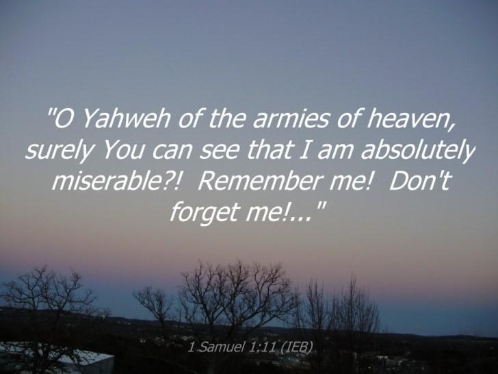 1 Samuel 1:11 image