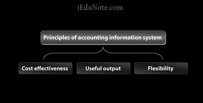 Principles of Accounting Information System
