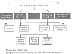 Functional Authority: Delegation of Functional Authority
