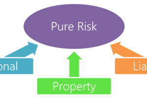 Pure Risk - 3 Types of Pure Risks