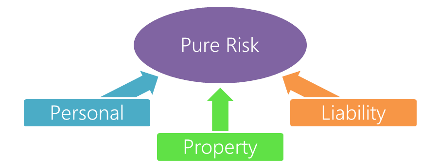 3 Types of Pure Risks