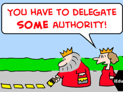 Delegation of Authority - Meaning, Process, Principles (Explained)