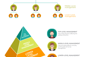 3 Management Levels in Organizational Hierarchy
