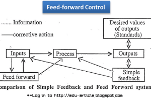 Feedforward Control: How Managers Uses Feedforward Control