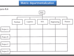 Matrix Departmentalization - Definition, Advantages, Disadvantages
