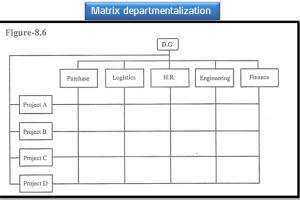 Matrix Departmentalization - Definition, Advantages, Disadvantages