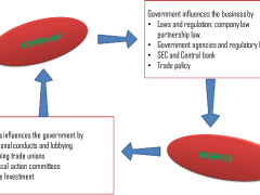 Relationship between Government and Business Organizations