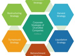 Corporate Strategies of Diversified Companies