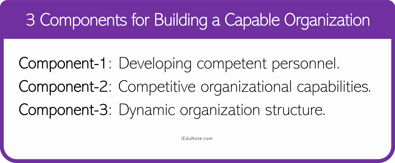 3 Components for Building a Capable Organization
