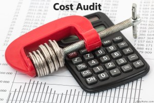 What is Cost Audit