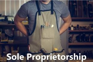 Sole Proprietorship: Definition, Features, Characteristics, Advantage, Disadvantages