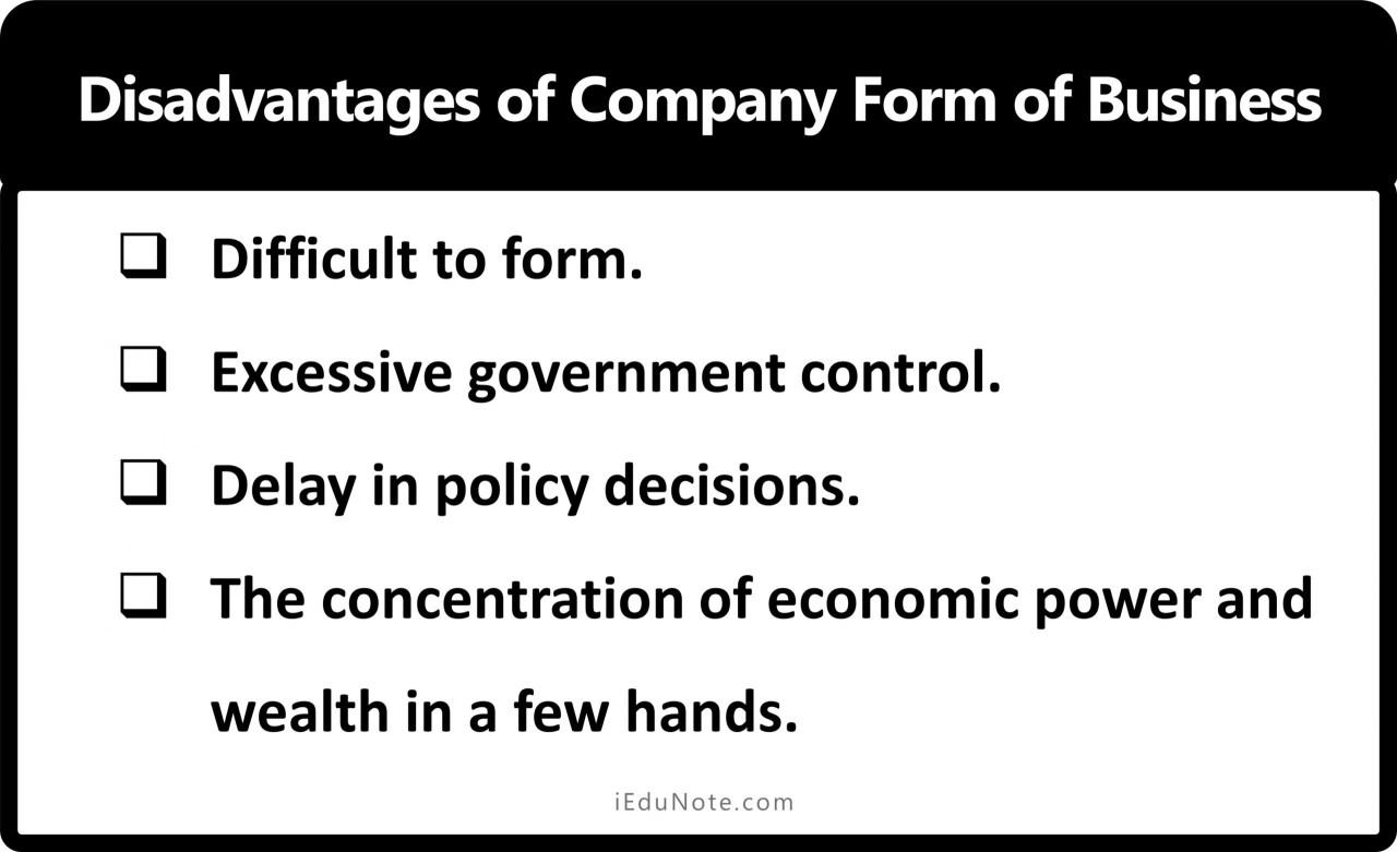 Disadvantages of Company
