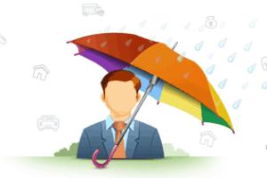 8 Types of Insurance Organizations