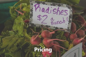 price meaning