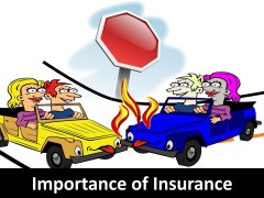 6 Importance of Insurance to a Business
