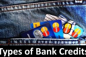 Types of Bank Credits