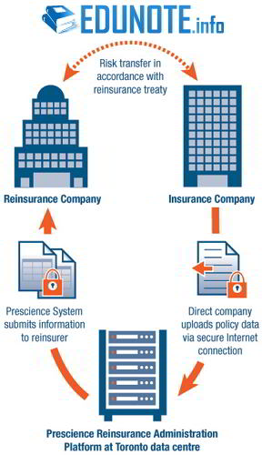 Application of Reinsurance Principle in Insurance Business Industry