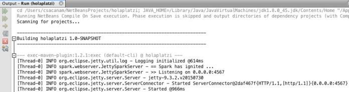 Spark API with Java