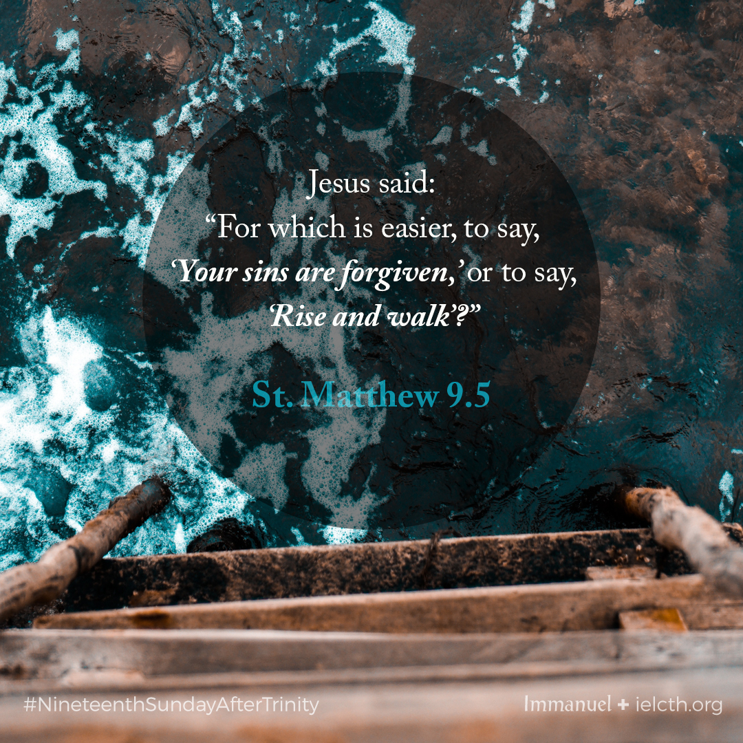 What they say on forgiveness sunday 88