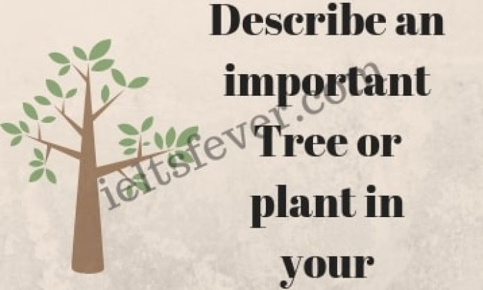 Describe an important Tree or plant in your country