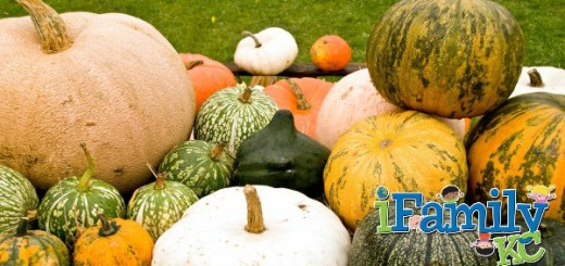 Enjoy Some Savings for Fall at KC Pumpkin Patch!