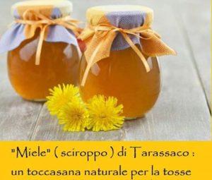 miele ( sciroppo) di tarassaco