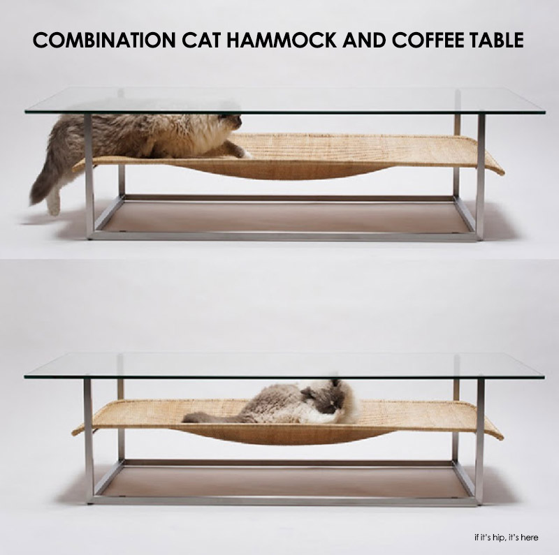 combination cat hammock and coffee table