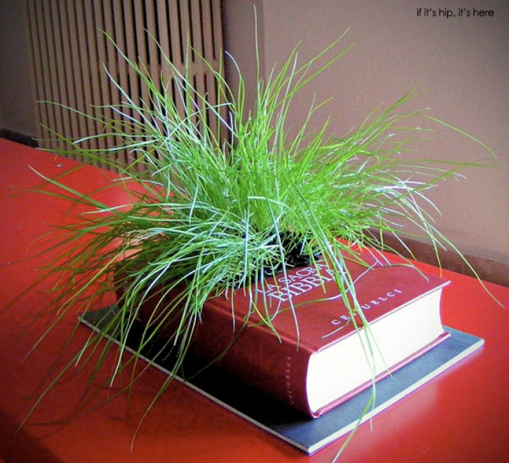 gartenkultur book planters