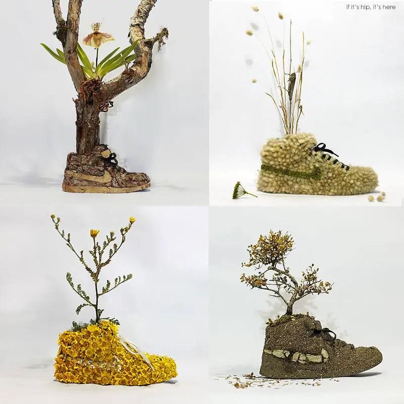 Mr. Plant Nike hero IIHIH