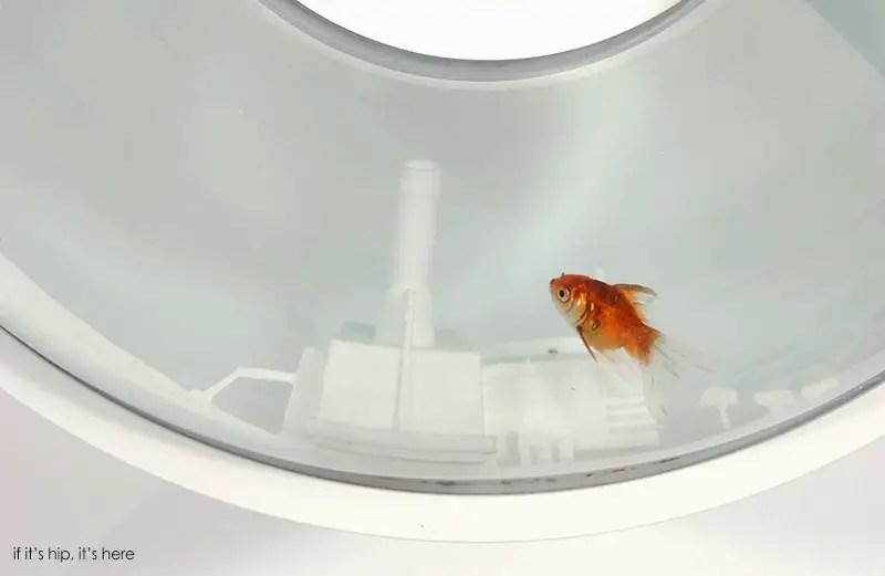 Raw-Edges_ Flying Fish Bowl _004