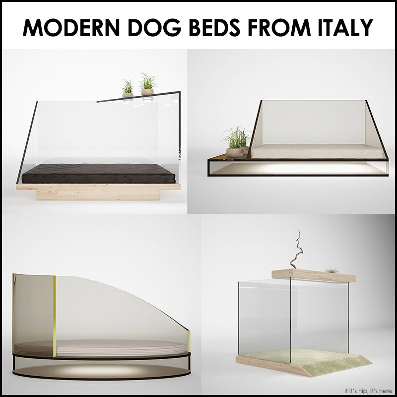 These Luxurious Modern Dog Beds, Designed By Riccardo Stellini For Cucce Du0027  Arredo, Combine Live Plants, Plexiglass, ...