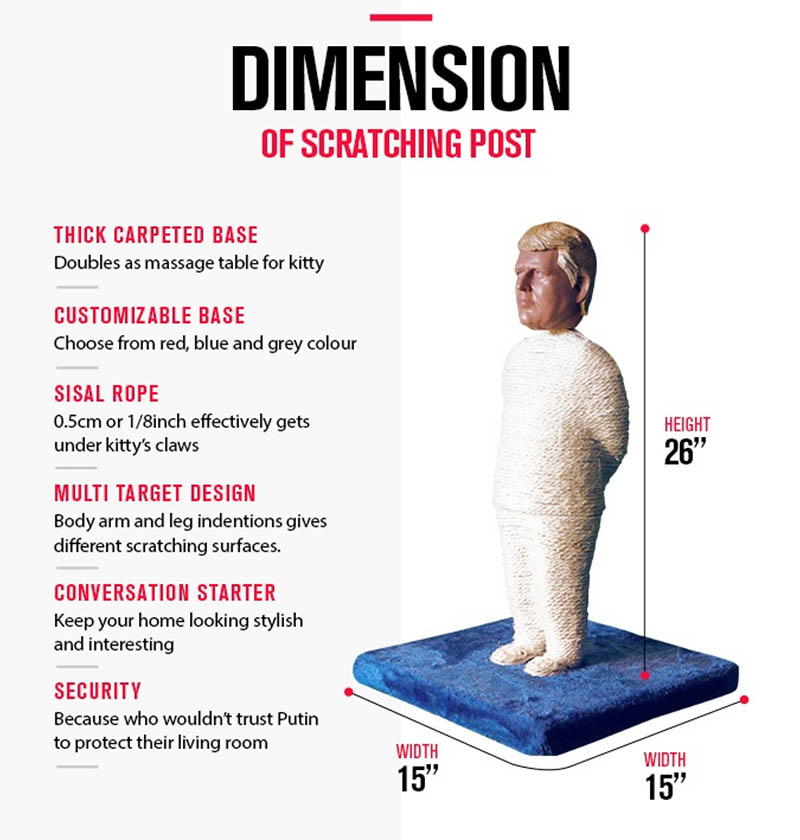 dimensions of cat scratching post