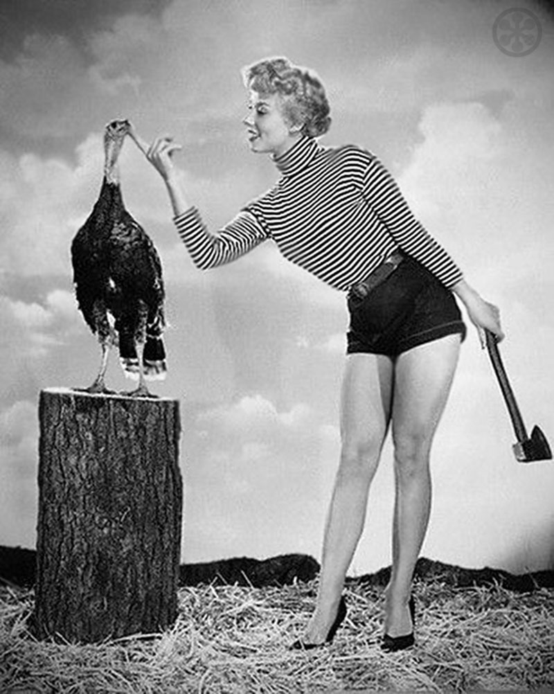 And Now The Photos Of Vintage Thanksgiving Pinups Whose Names I Dont Know
