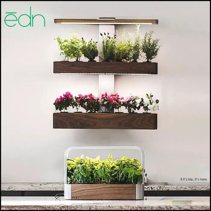 indoor gardens by edn
