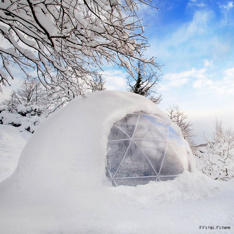 garden igloo. In Winter Close The Windows And Dome Will Heat Up Several Degrees, Especially When It Is Very Cold But Sun Out. Also Ideal For Cutting Out Garden Igloo