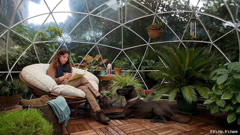 clear domed tent