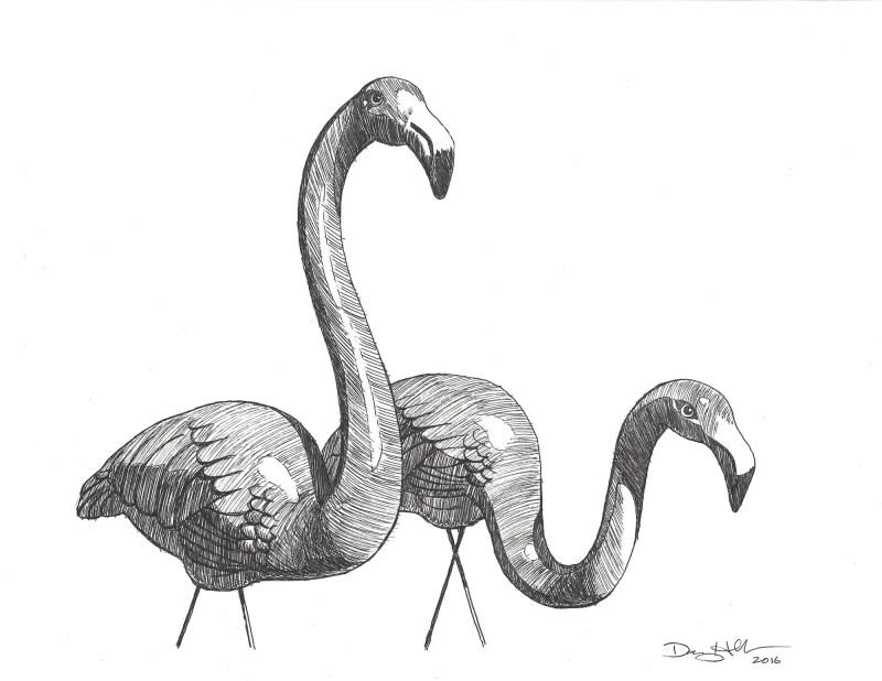 drawing of pink flamingos