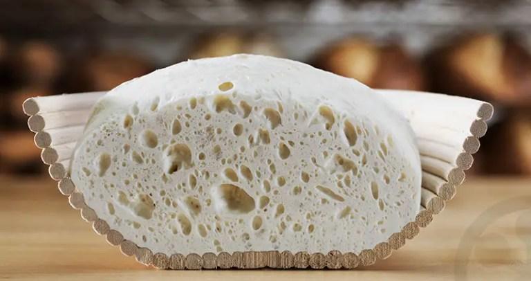 best bread cookbook