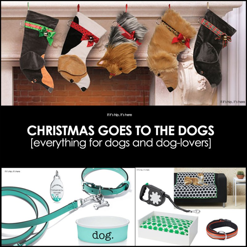 if you think of your dog as a member of the family christmas is as fun for your pet as it is for your kids and with these great canine inspired awesome